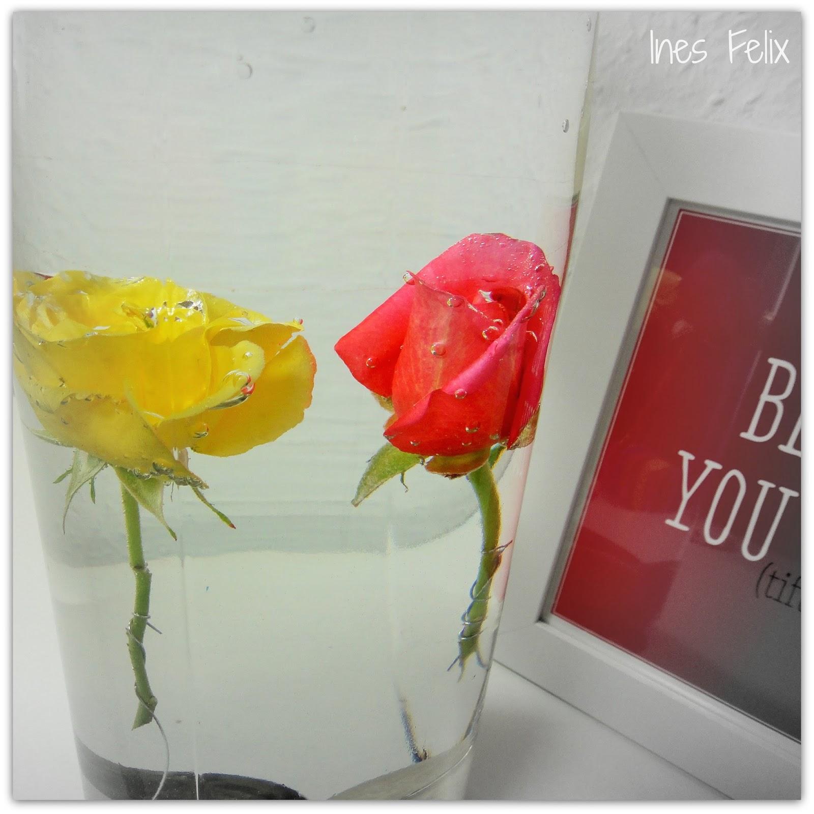 Ines Felix Kreatives Zum Nachmachen Rosen Im Wasserglas