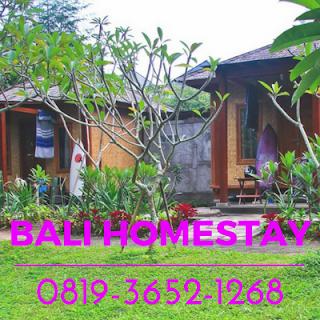 Homestay Murah Harga Di Bali