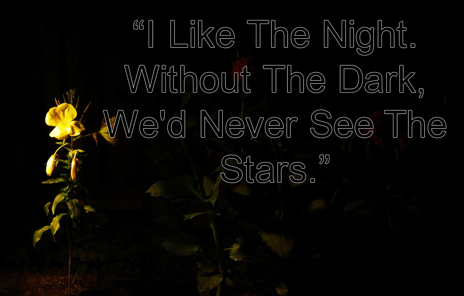 10 lovely good night pictures good night beautiful quotes about night with flower pictures izmirmasajfo