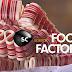 "FOOD FACTORY   Τα ""Εργοστάσια Φαγητού"" έρχονται στο κανάλι Discovery Science"