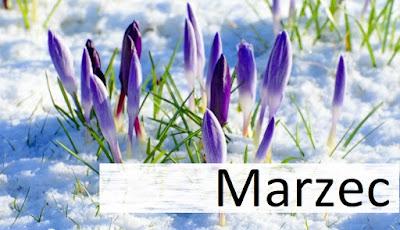 #Podsumowanie lutego + zapowiedzi marca