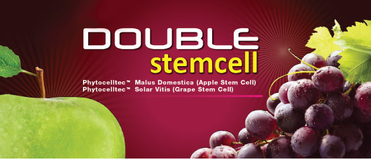 Double Stem Cell Apa Itu Double Stem Cell