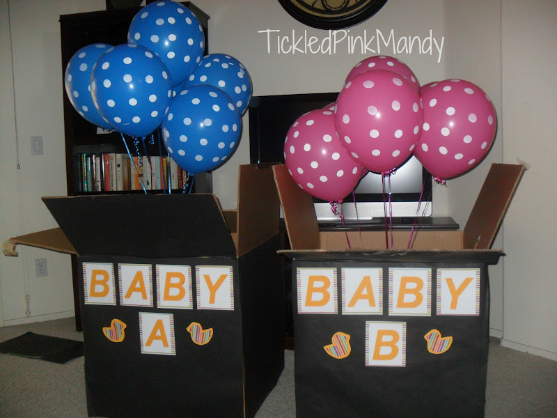 The Twins Gender Reveal