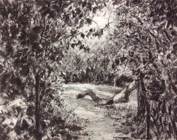 Charcoal sketching made using willow charcoal, By Manju Panchal