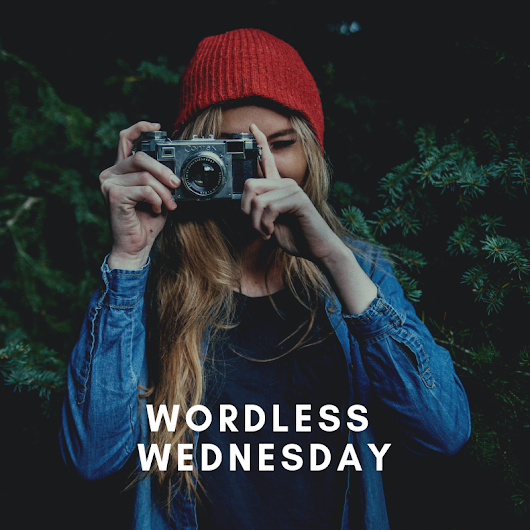 ora adzlin: 5 FREE Wordless Wednesday Social Media Post Design to Download !