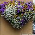 Flowers in Sandnes.
