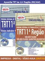 Apostila TRT 11 RR-AM 2017 para Técnico Judiciário e cargo de Analista Judiciário, Grátis CD Rom