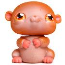 Littlest Pet Shop Purse Hamster (#36) Pet