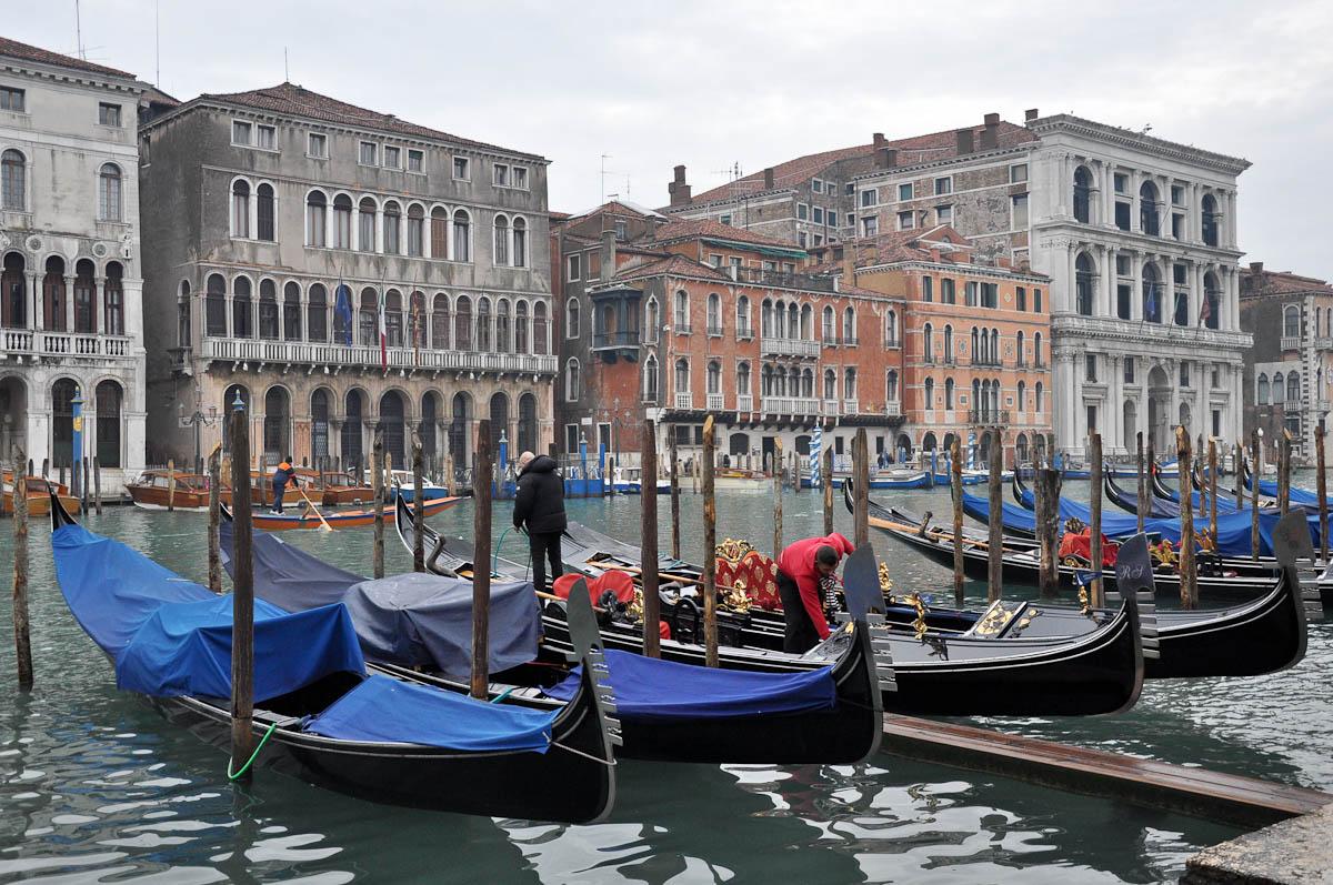 Gondoliers preparing the gondolas for the day ahead, Rialto Bridge, Venice, Italy