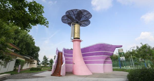 《台中.新社》星願紫風車|大型音樂盒|花迎光臨彩虹斗笠隧道|紫斑蝶休息站