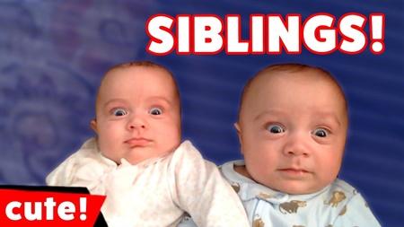 The Funniest Cute Siblings Home Videos & Bloopers of 2017 Weekly Compilation