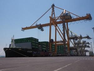 Surabaya Terminal Container
