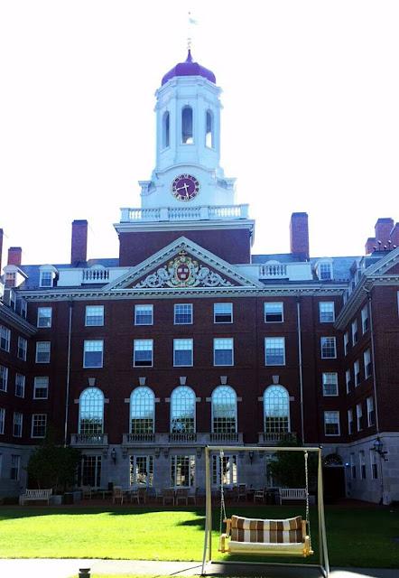 melhor faculdade do mundo