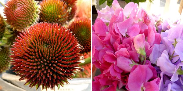 Buttons & Blooms - Florists at the Antique Café in Morningside, Durban