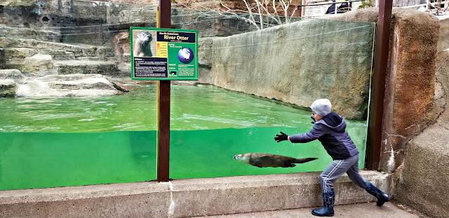 Grand Rapids Zoo