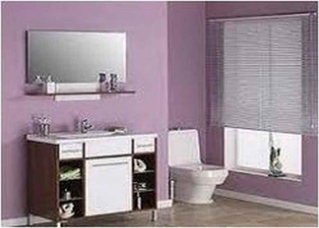 Small Bathroom Ceiling Color SBC 25A