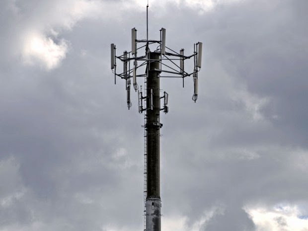 Professional Cellular and Cell Site Management Services