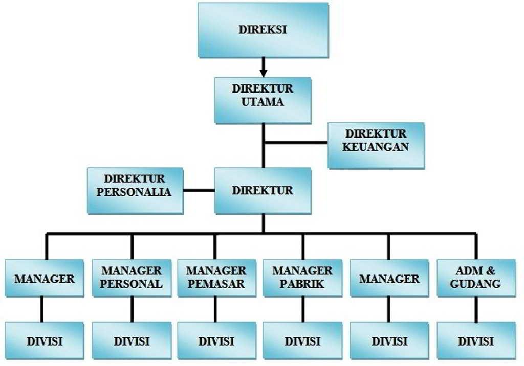 struktur organisasi perusahaan secara umum dan deskripsi kerja masing-masing posisi