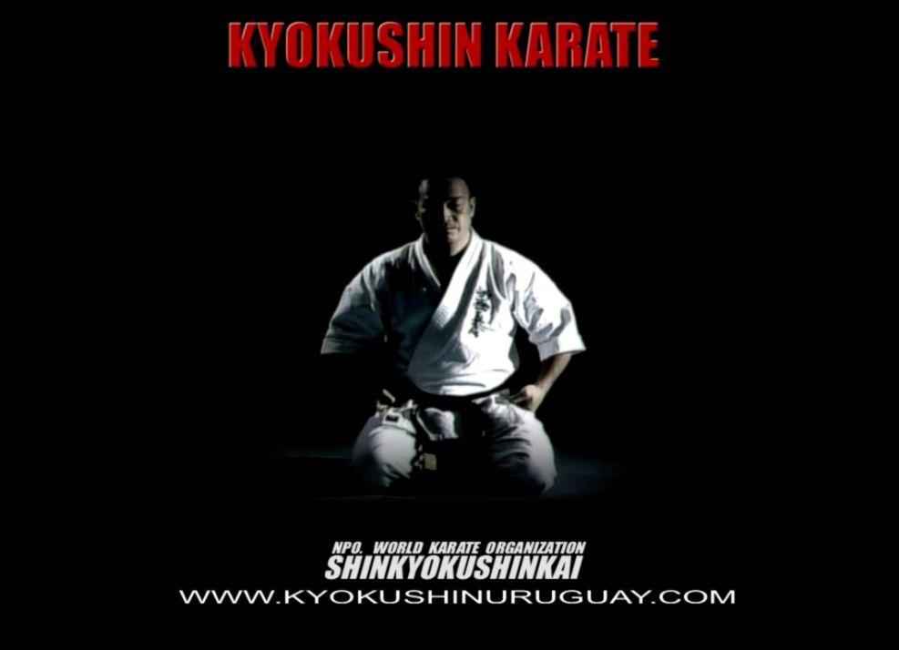 Kyokushin Karate Wallpaper The Champion Wallpapers