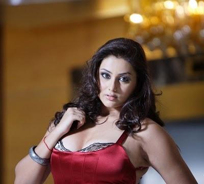 Tamil hot actress namitha stills