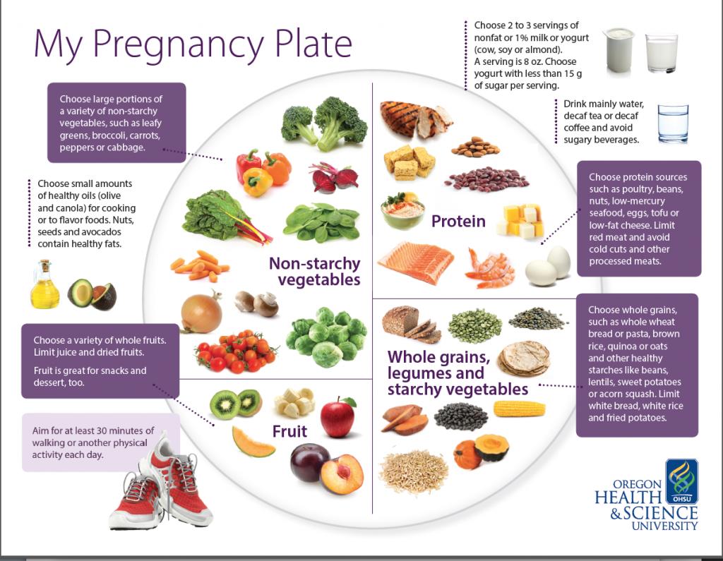 set hamil shaklee, vitamin semasa mengandung