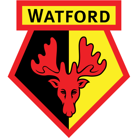 2020 2021 Recent Complete List of Watford2018-2019 Fixtures and results