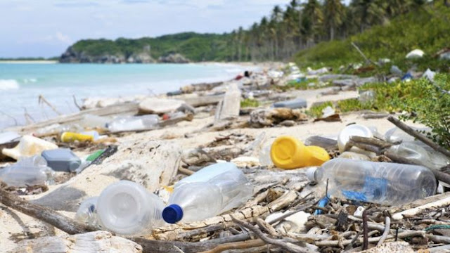#Trashtag: La sfida virale che sta ripulendo il globo