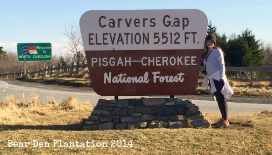 Carver's Gap on the North Carolina / Tennessee State Line.  Part of the Appalachian Trail
