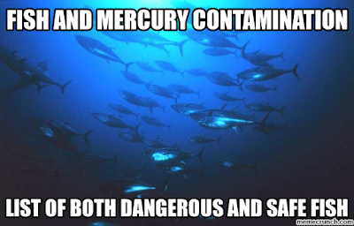 2018 mercury contamination info for fish and other for Mercury in fish list