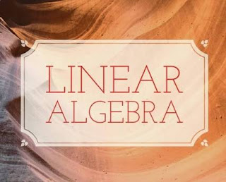 LINEAR ALGEBRA PROBLEM, SOLUTION AND TIPS EBOOK
