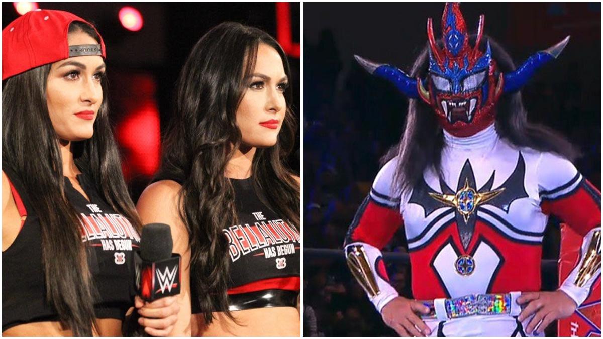 The Bella Twins e Jushin  Liger podem ser introduzidos ao WWE Hall of Fame 2020