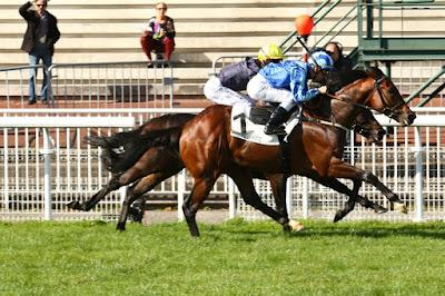 Lingfield Horse Racing Tips