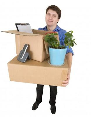Bảo quản cây cảnh trong quá trình chuyển nhà