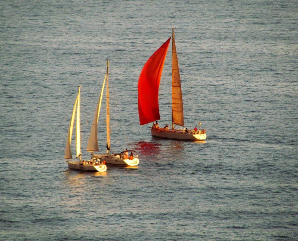 nice colors in sailing boats