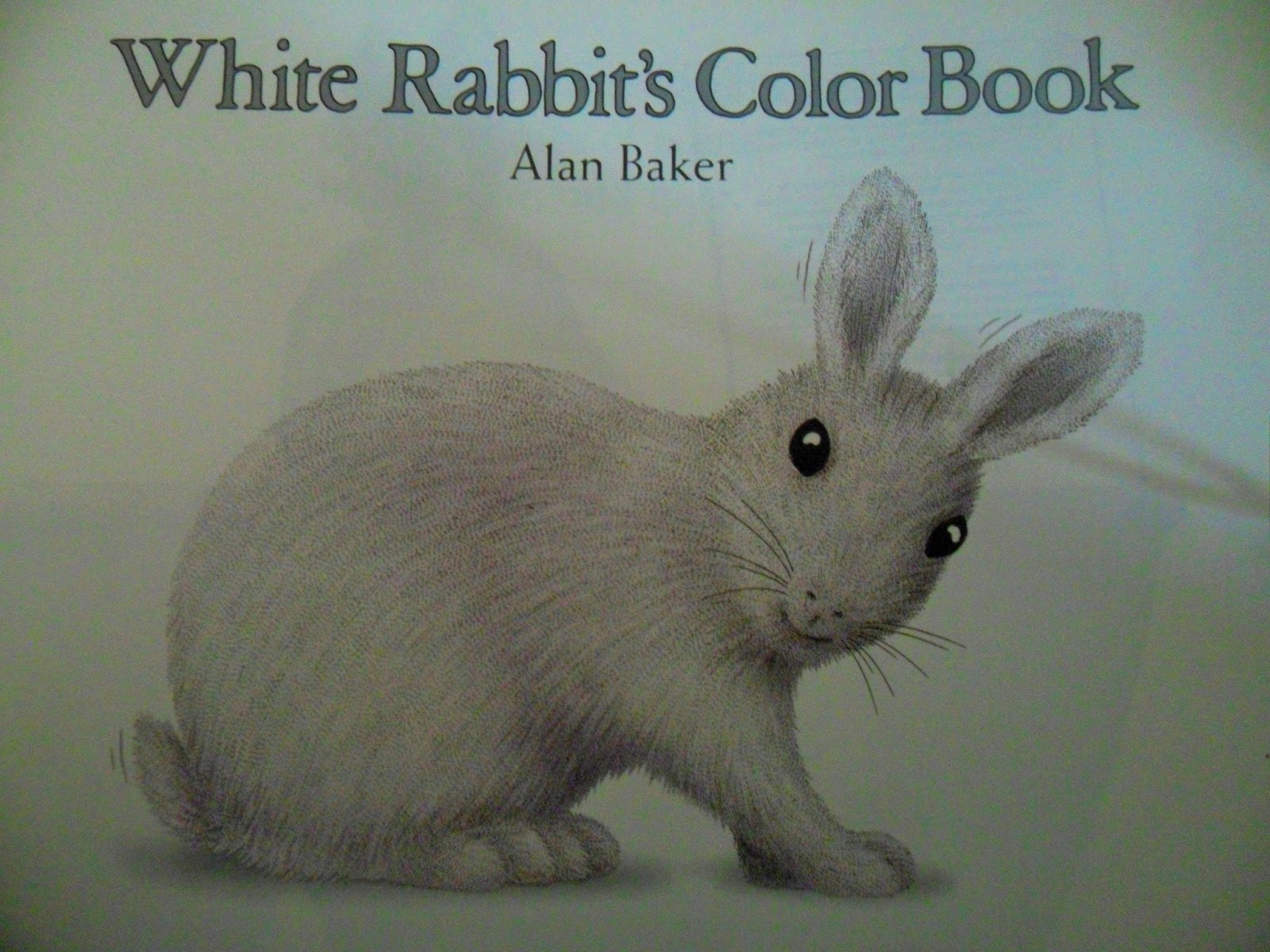 Book Review: White Rabbit\'s Color Book - Doktor Doktor Lads