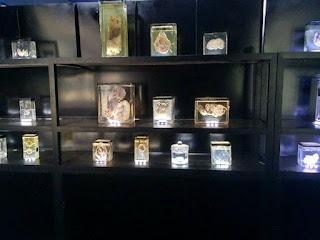 specimen exhibits