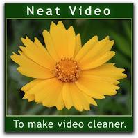 Neat Video Logo