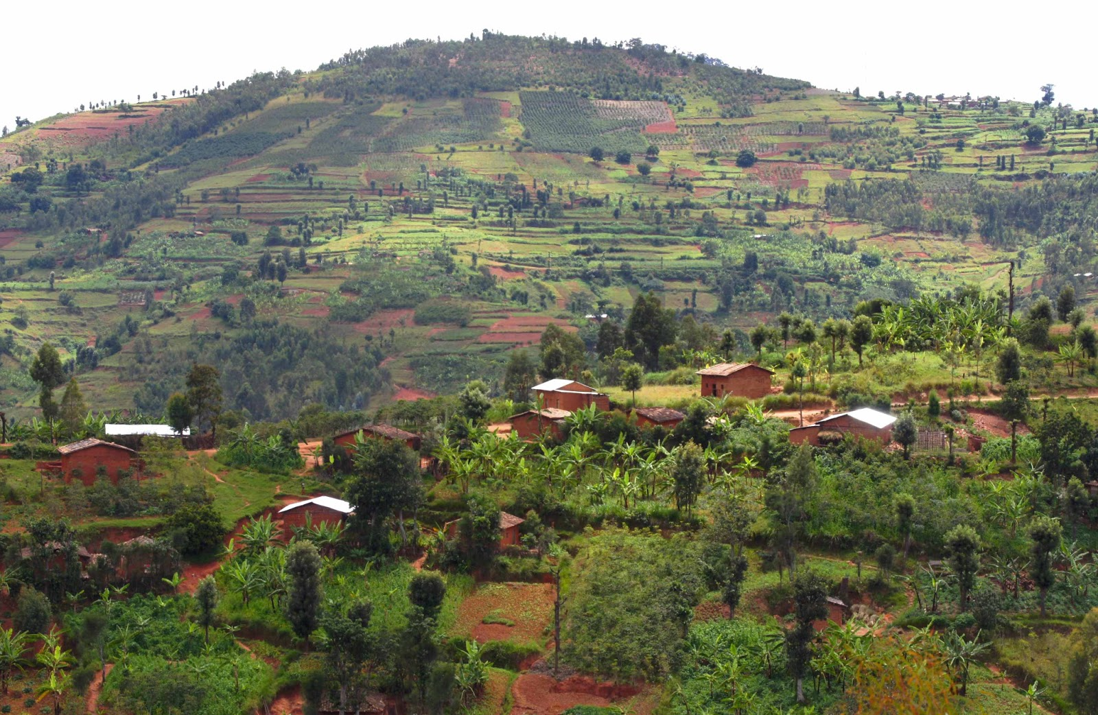 burundi - photo #38