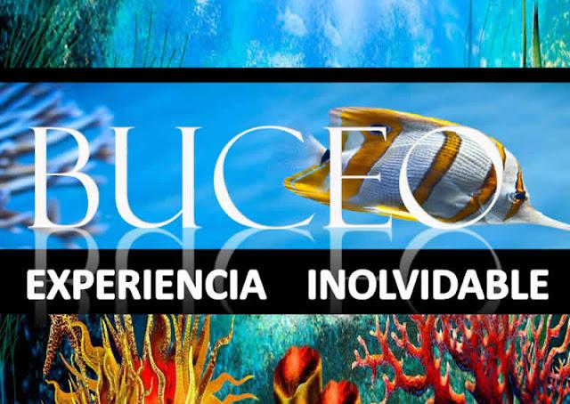IMAGEN Buceo vive una experiencia inolvidable