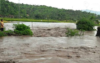 <b>Bibir Sungai Jebol, Tanaman Padi di Jatiwangi Rusak Dihantam Banjir </b>