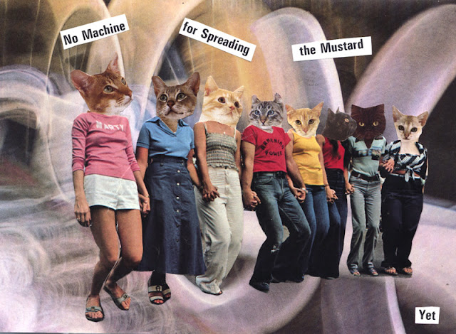 Surreal cat collages