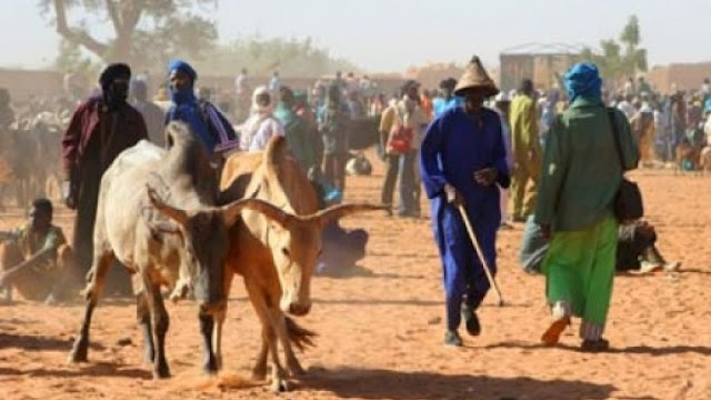 Describing all Fulani herdsmen as criminals can split Nigeria – Group warns