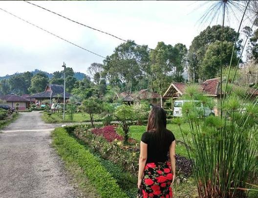 Penginapan di Pemandian Air Panas Ciwalini Ciwidey Bandung