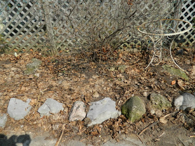 Riverdale Spring Cleanup Before by Paul Jung Gardening Services--a Toronto Gardening Company