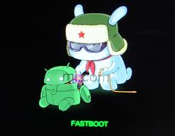 Csc Fastboot Mode