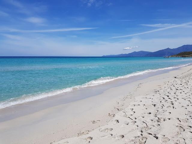 spiaggia saleccia corsica