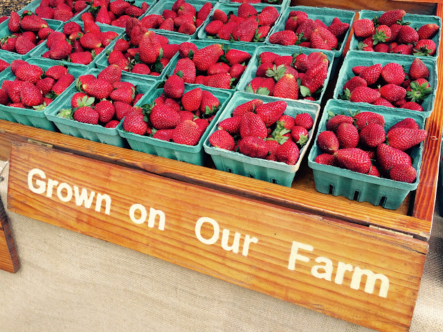 Charleston Farmers Market in Marion Square Strawberries from Canadys SC | The Lowcountry Lady