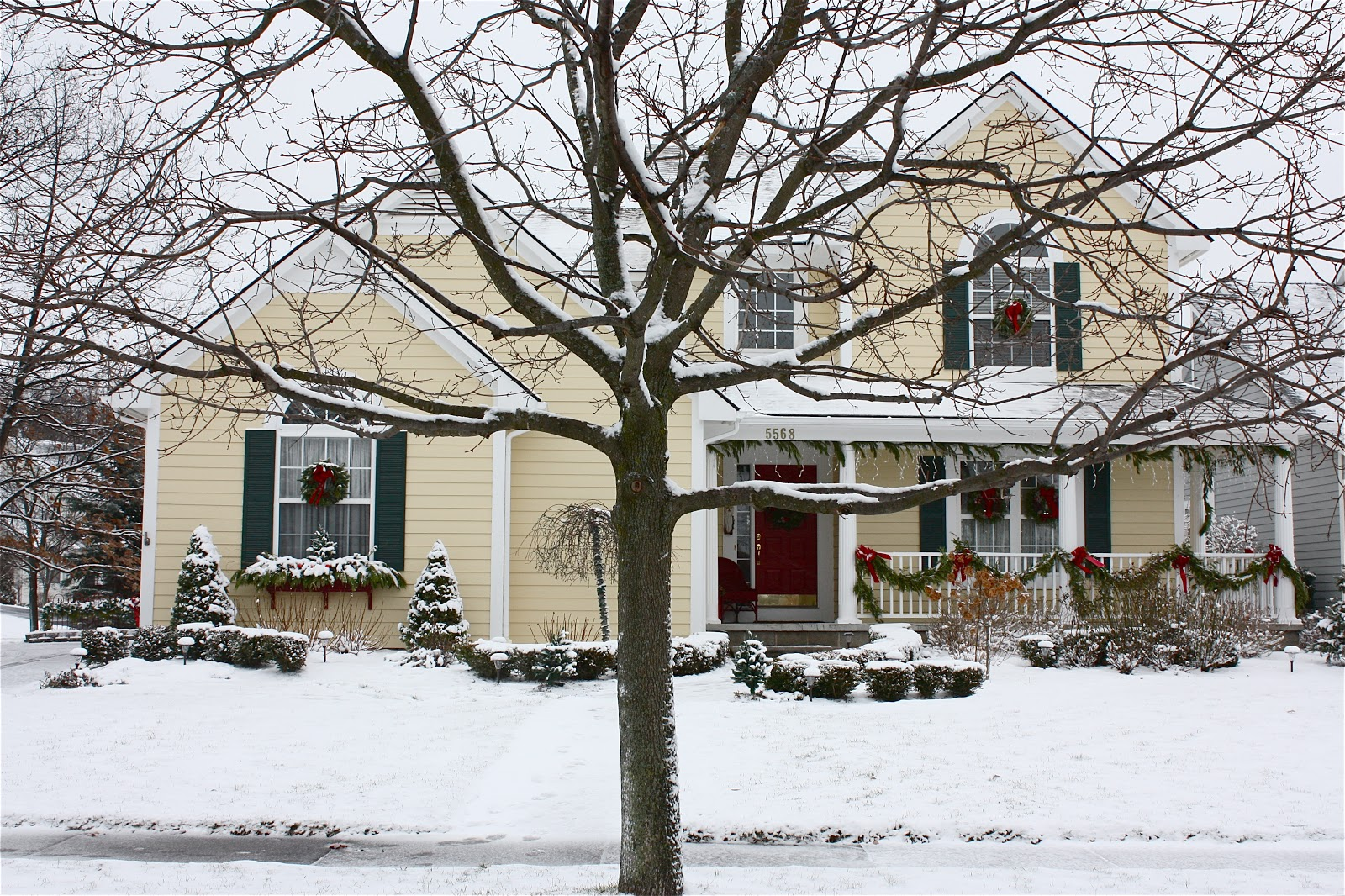 The Yellow Cape Cod: Michigan Christmas Outdoor Home Tour