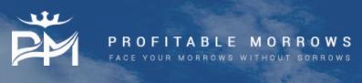 profitablemorrows.com обзор