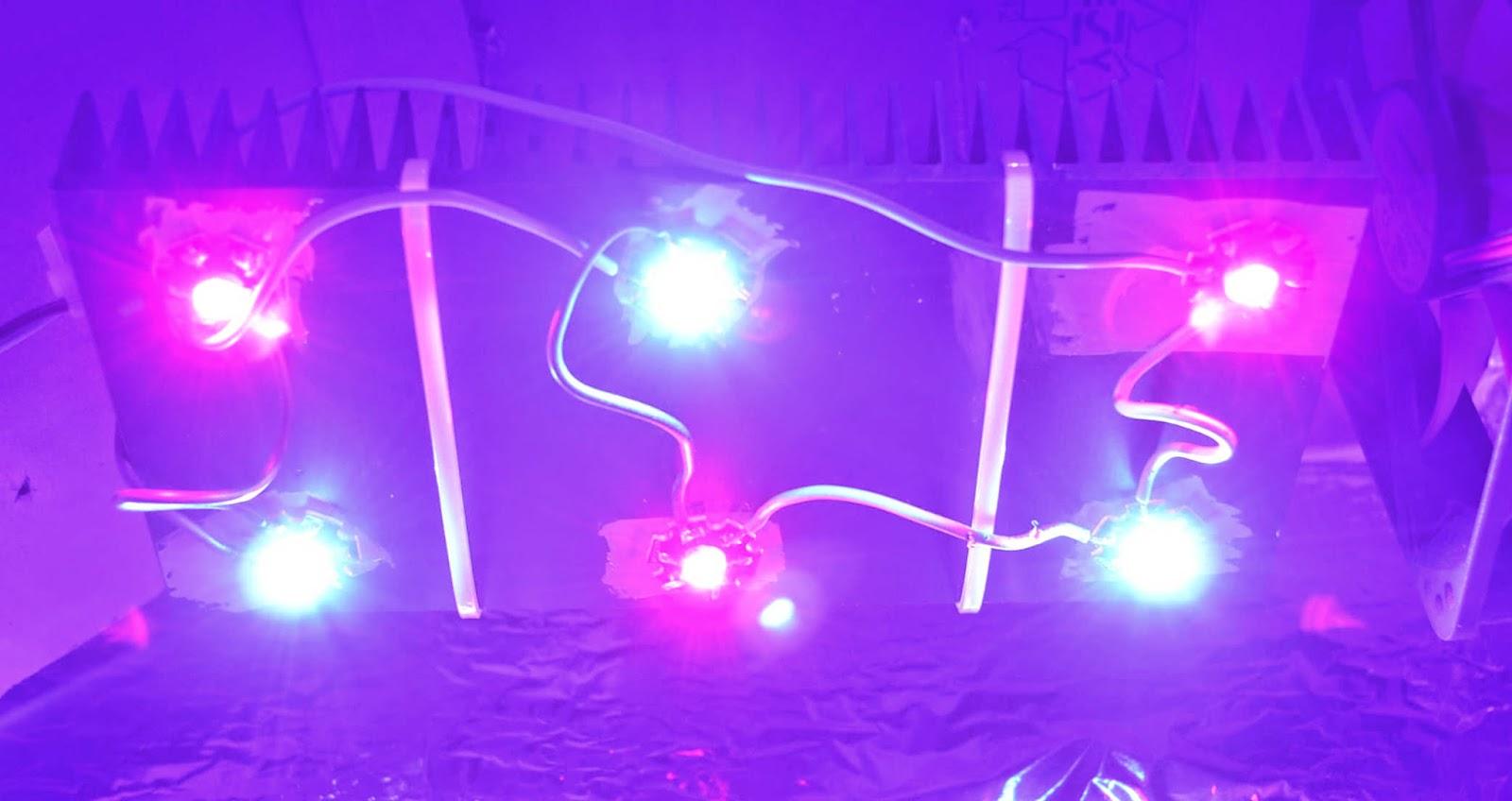 kunstlicht f r pflanzen welche wellenl ngen sind wichtig nm. Black Bedroom Furniture Sets. Home Design Ideas